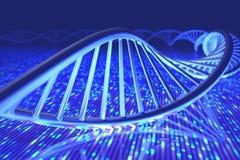 Ακολουθία DNA Senger Στοκ Εικόνες