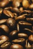 Ακραία κινηματογράφηση σε πρώτο πλάνο των πρόσφατα ψημένων φασολιών καφέ στοκ φωτογραφία με δικαίωμα ελεύθερης χρήσης