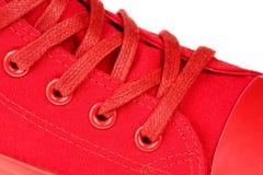 Ακραίος στενός επάνω της υψηλής τοπ δαντέλλας των κόκκινων γυναικών επάνω στο πάνινο παπούτσι που απομονώνεται στο άσπρο υπόβαθρο στοκ εικόνα