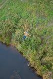 Ακραίο άλμα από τη γέφυρα Τα άλματα ατόμων εκπληκτικά γρήγορα στο bungee που πηδά στο πάρκο ουρανού ερευνούν την ακραία διασκέδασ στοκ εικόνα