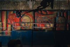 Ακραίο τέχνασμα Bmx στο skatepark στοκ εικόνες