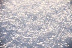Ακριβής χειμώνας Στοκ Φωτογραφία