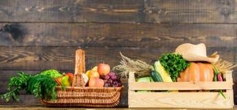 Ακριβώς από τον κήπο Φρέσκα λαχανικά υπηρεσιών παράδοσης από το αγρόκτημα Αγοράστε τα φρέσκα homegrown λαχανικά E στοκ εικόνα με δικαίωμα ελεύθερης χρήσης
