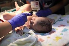Ακριβώς γεννημένο κοριτσάκι Στοκ Εικόνα