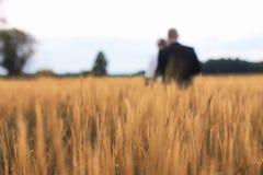 Ακριβώς παντρεμένοι εραστές που περπατούν σε έναν τομέα στην ημέρα φθινοπώρου Στοκ Εικόνες