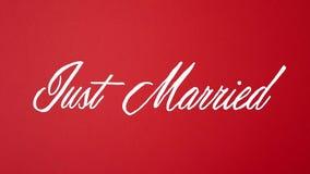Ακριβώς παντρεμένος στην κίνηση στάσεων απεικόνιση αποθεμάτων
