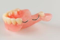 Ακρυλική οδοντοστοιχία με τις αγκράφες μετάλλων στοκ φωτογραφία με δικαίωμα ελεύθερης χρήσης