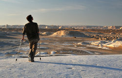 ακρωτηριασμένο λευκό ερή Στοκ Εικόνες