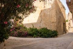 Ακρόπολη Mdina, Μάλτα στοκ φωτογραφίες με δικαίωμα ελεύθερης χρήσης