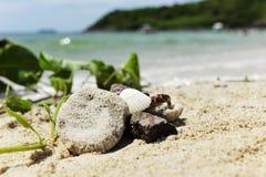 Ακτή άμμου και νησιών κοχυλιών στοκ φωτογραφίες