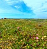 Ακτή Αλγκάρβε, Πορτογαλία του θερινού Ατλαντικού Ωκεανού Στοκ φωτογραφία με δικαίωμα ελεύθερης χρήσης