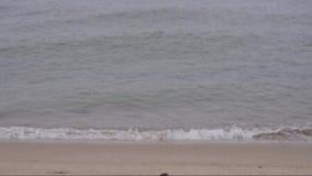 Ακτή Βόρεια Θαλασσών μια βροχερή ημέρα φθινοπώρου απόθεμα βίντεο