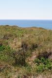 Ακτή Βόρεια Θαλασσών με τις μακριές χλόες στοκ φωτογραφίες