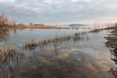 Ακτή λιμνών με τις αντανακλάσεις και τους καλάμους Στοκ Φωτογραφίες