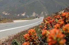 Ακτή και εθνική οδός 1, ΗΠΑ Καλιφόρνιας Καλιφόρνιας Στοκ φωτογραφία με δικαίωμα ελεύθερης χρήσης
