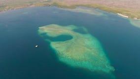 Ακτή και κοραλλιογενής ύφαλος απόθεμα βίντεο
