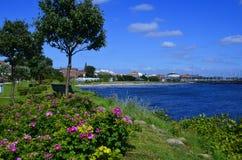 Ακτή και παραλία σε Ystad, Σουηδία Στοκ Εικόνες