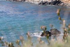 Ακτή Καλιφόρνιας Palos Verdes στοκ εικόνα με δικαίωμα ελεύθερης χρήσης