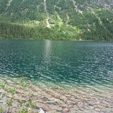 ακτή λιμνών Στοκ Φωτογραφίες
