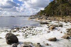 ακτή Μάρτιος σουηδικά Στοκ Φωτογραφία
