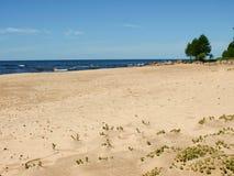 Ακτή με την άμμο και τις εγκαταστάσεις στοκ φωτογραφία