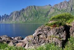 ακτή Νορβηγία δύσκολη Στοκ εικόνα με δικαίωμα ελεύθερης χρήσης