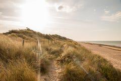 Ακτή παραλιών αμμόλοφων στο πίσω φως Στοκ Εικόνες