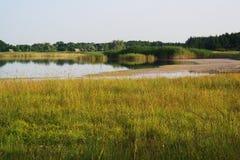 Ακτή ποταμών, άγρια φύση Ηλιόλουστο τοπίο ποταμός μικρός Στοκ Φωτογραφία