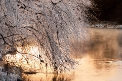 Ακτή ποταμών το χειμώνα Στοκ εικόνα με δικαίωμα ελεύθερης χρήσης