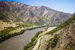 Ακτή ποταμών Katun στα βουνά Altai Chemal, Altay Δημοκρατία, Σιβηρία, Ρωσία στοκ εικόνα με δικαίωμα ελεύθερης χρήσης