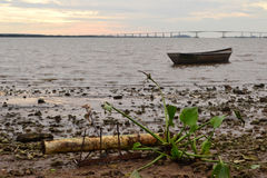 Ακτή ποταμών UruguayΣτοκ φωτογραφία με δικαίωμα ελεύθερης χρήσης