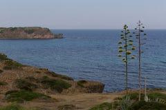 Ακτή Σαρδηνία Sant'Antioco Στοκ Φωτογραφία
