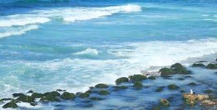 Ακτή στην Αλεξάνδρεια Στοκ εικόνες με δικαίωμα ελεύθερης χρήσης