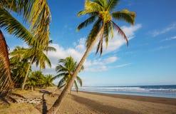 Ακτή στη Κόστα Ρίκα στοκ εικόνα με δικαίωμα ελεύθερης χρήσης