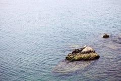 Ακτή στις Συρακούσες Στοκ Φωτογραφία