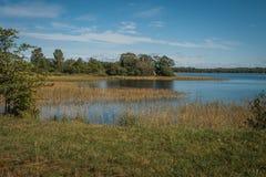 Ακτή της λίμνης Onega, Kizhi, Καρελία Στοκ Φωτογραφίες
