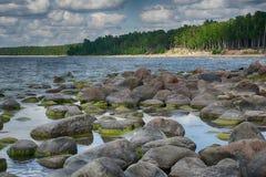 Ακτή της θάλασσας της Βαλτικής στις θερινές διακοπές Στοκ Εικόνες