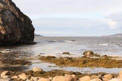 Ακτή της Θάλασσας του Μπάρεντς Στοκ Φωτογραφίες