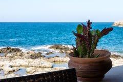 Ακτή της Κρήτης στοκ εικόνα με δικαίωμα ελεύθερης χρήσης
