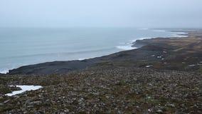 Ακτή της νότιας Ισλανδίας απόθεμα βίντεο