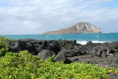 ακτή της Χαβάης στοκ φωτογραφία