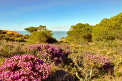 Ακτή του Αλγκάρβε στην Πορτογαλία Λάγκος, Faro, Albufeira στοκ εικόνες με δικαίωμα ελεύθερης χρήσης