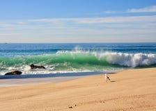 Ακτή του Ατλαντικού Ωκεανού στοκ εικόνες με δικαίωμα ελεύθερης χρήσης