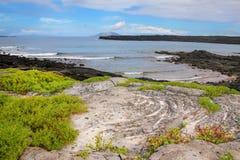 Ακτή του κινεζικού νησιού καπέλων, Galapagos εθνικό πάρκο, Ισημερινός Στοκ εικόνες με δικαίωμα ελεύθερης χρήσης