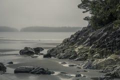 Ακτή του tofino Στοκ Εικόνες