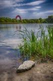 ακτή φύλλων λιμνών λουλουδιών αφαίρεσης Στοκ εικόνα με δικαίωμα ελεύθερης χρήσης