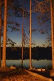 ακτή φύλλων λιμνών λουλουδιών αφαίρεσης Στοκ Εικόνα