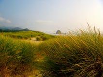 Ακτή όπως βλέπει μέσω της χλόης αμμόλοφων άμμου Στοκ φωτογραφία με δικαίωμα ελεύθερης χρήσης