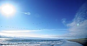ακτή Όρεγκον Στοκ Φωτογραφίες