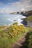 ακτή Cornish Στοκ Φωτογραφία